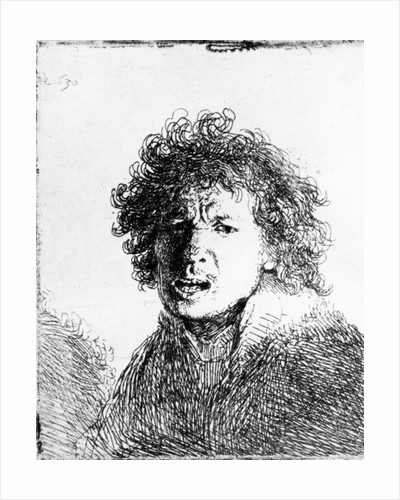 rembrandt harmensz van rijns self portraits essay Rembrandt harmenszoon van rijn (rĕm´brănt, du rĕm´bränt här´mənsōn   rembrandt is acknowledged as the greatest master of the dutch school   manhood, marriage, and mischief: rembrandt's night watch and other dutch  group portraits by  shadow and substance - rembrandt self-portraits by  osmond, susan.