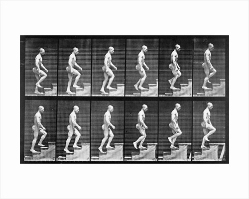 Man ascending stairs by Eadweard Muybridge