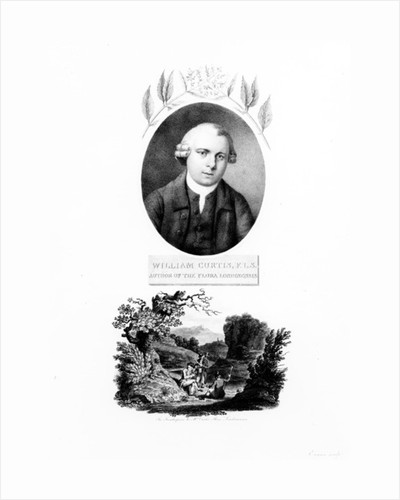 Frontispiece of 'Flora Londinensis', with a portrait of the author William Curtis, edition published in 1802 by English School