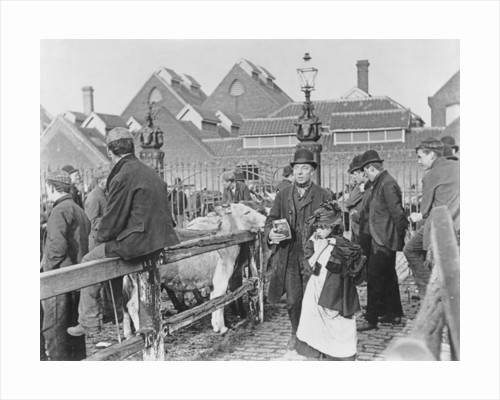 British village cattle market, Victorian by English School