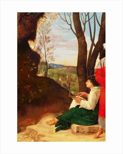 Giorgione posters | Giorgione prints