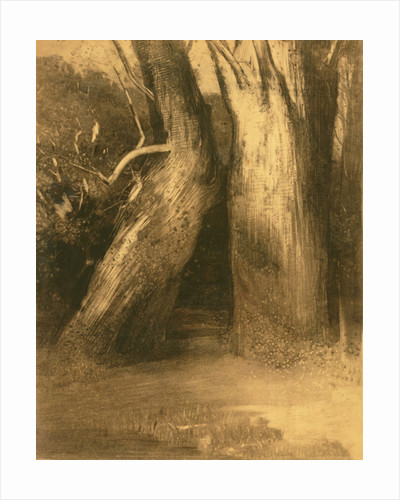Two Trees by Odilon Redon