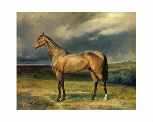 'Abdul Medschid' the chestnut arab horse by Carl Constantin Steffeck
