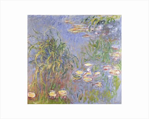 Water-Lilies, Cluster of Grass by Claude Monet