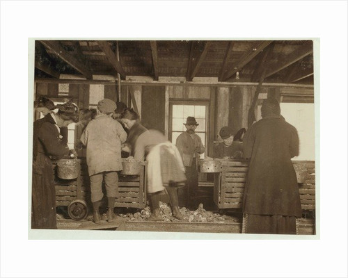 10 year old Mike Murphy, 7 year old Annie Healy and 10 year old Ross Healy in the shucking shed at Alabama Canning Co by Lewis Wickes Hine
