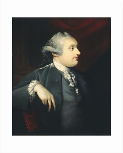 William Henry Cavendish Bentinck, 3rd Duke of Portland by Matthew Pratt