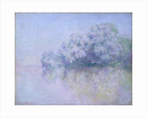Île aux Orties near Vernon, 1897 by Claude Monet