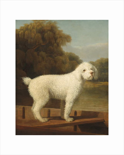 White Poodle in a Punt, c.1780 by George Stubbs