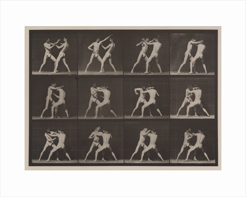 Plate Number 340 by Eadweard Muybridge