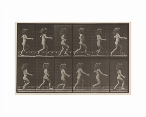 Plate Number 469 by Eadweard Muybridge