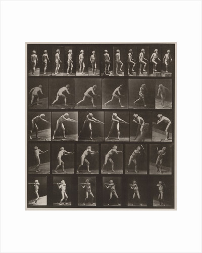 Plate Number 521 by Eadweard Muybridge