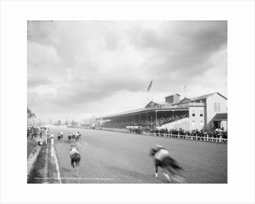 Finish of a handicapped, Crescent City Jockey Club, New Orleans, Louisiana by Detroit Publishing Co.