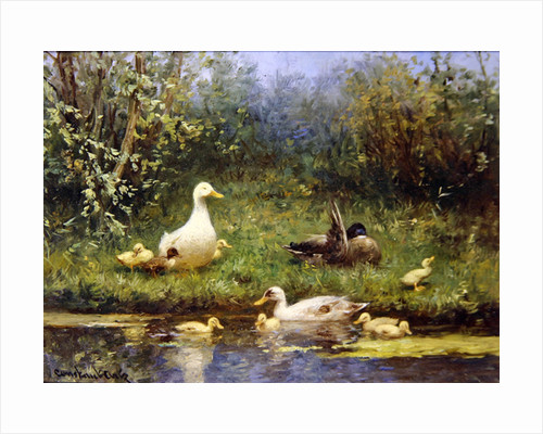 Ducks on a riverbank by David Adolph Constant Artz