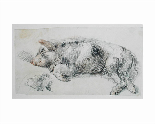 Sleeping Pig by James Ward