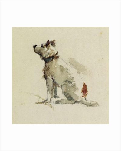 A Terrier, sitting facing left by Peter de Wint