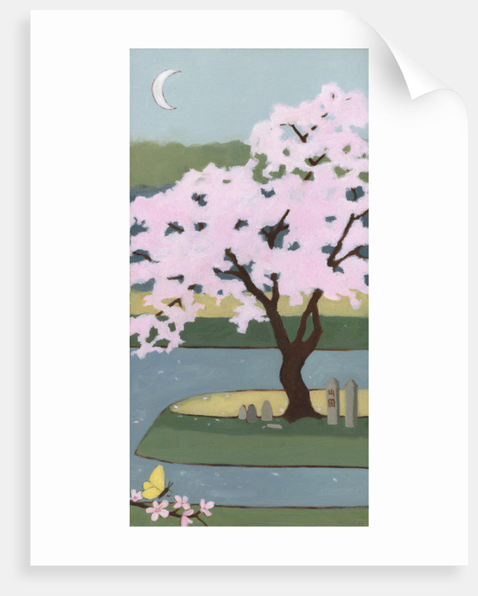 Cherry Tree, Spring by Megan Moore