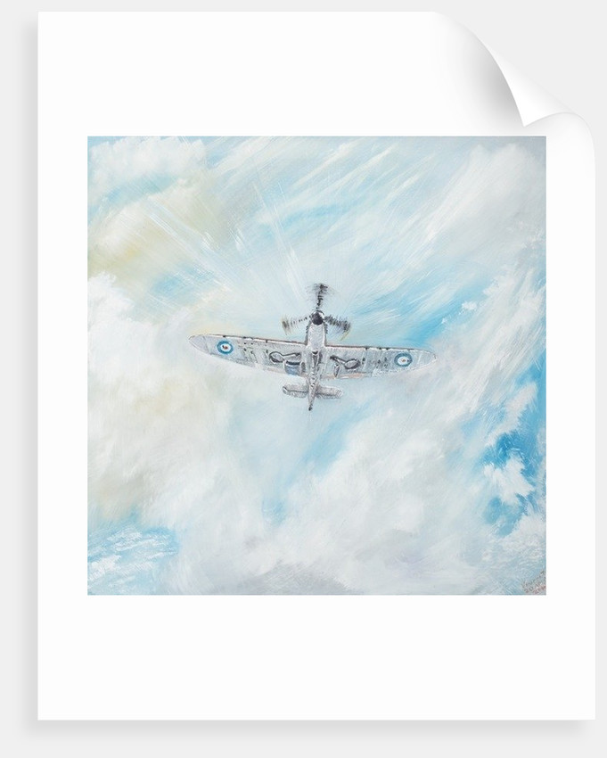 Spitfire. 'Ace Of Spades' by Vincent Alexander Booth