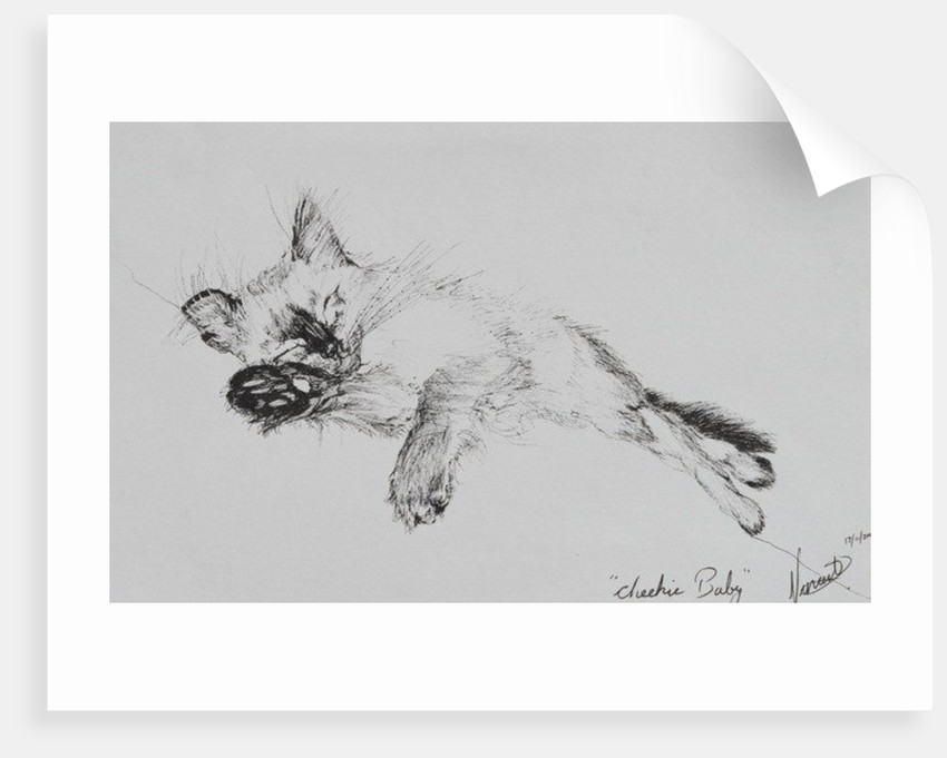 Kitty, 'Baby' by Vincent Alexander Booth