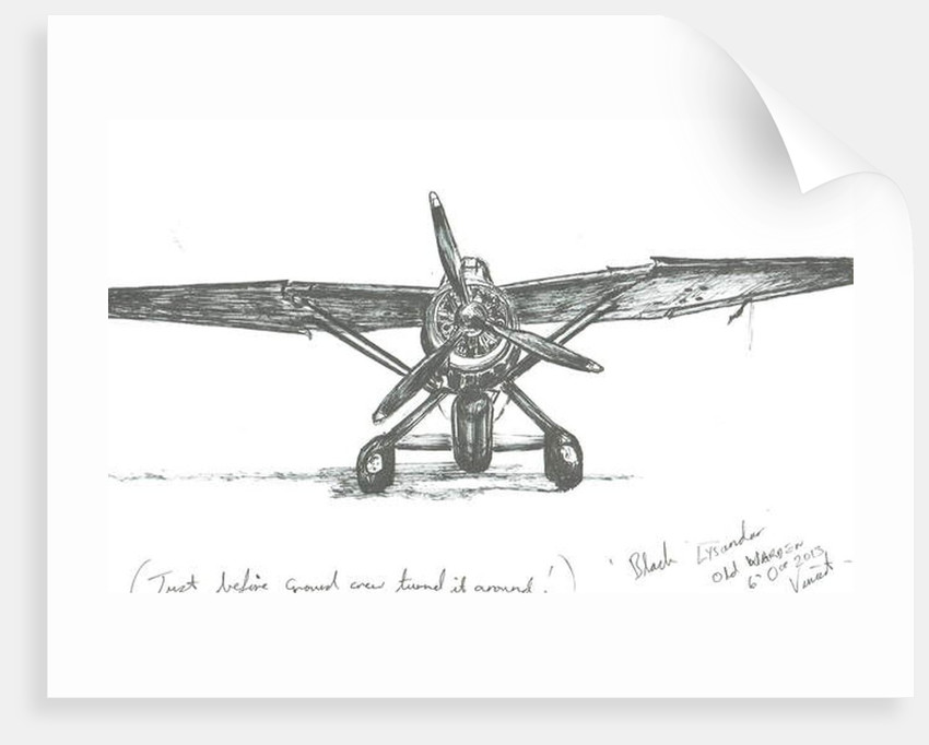 Lysander at Old Warden, 2012 by Vincent Alexander Booth