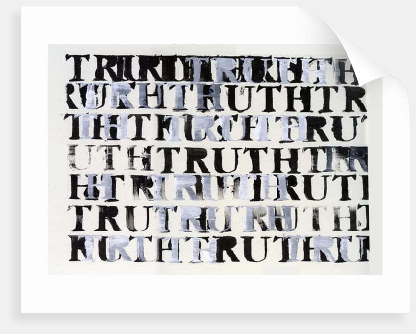 The Truth in Black and White by Nancy Moniz Charalambous