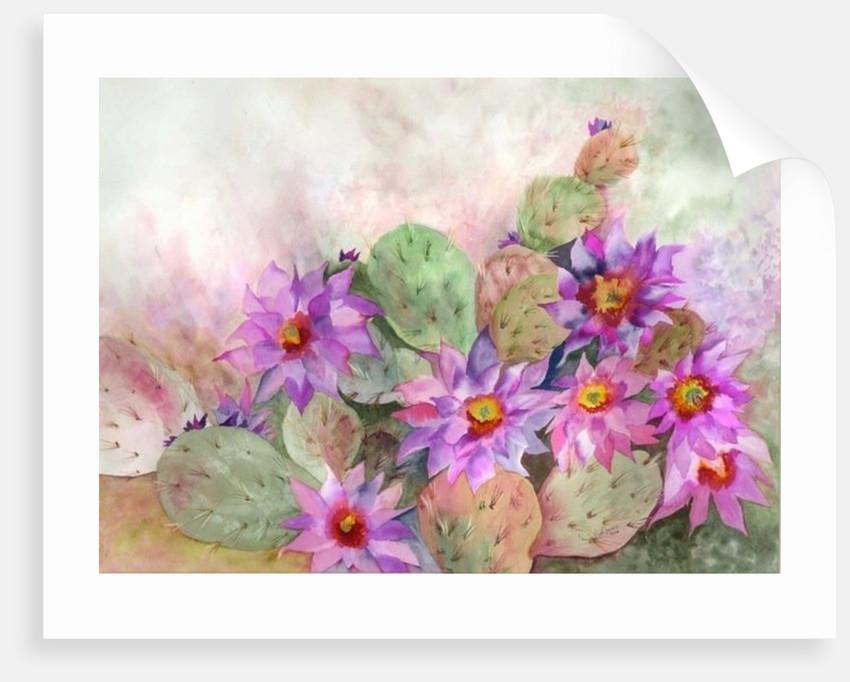 cactus garden by Neela Pushparaj