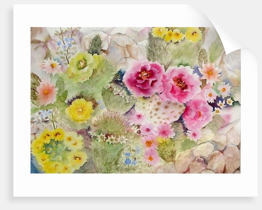Blooming Cacti by Neela Pushparaj