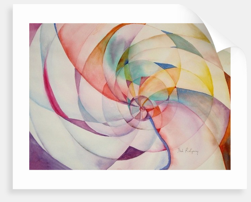 Endless Circles by Neela Pushparaj