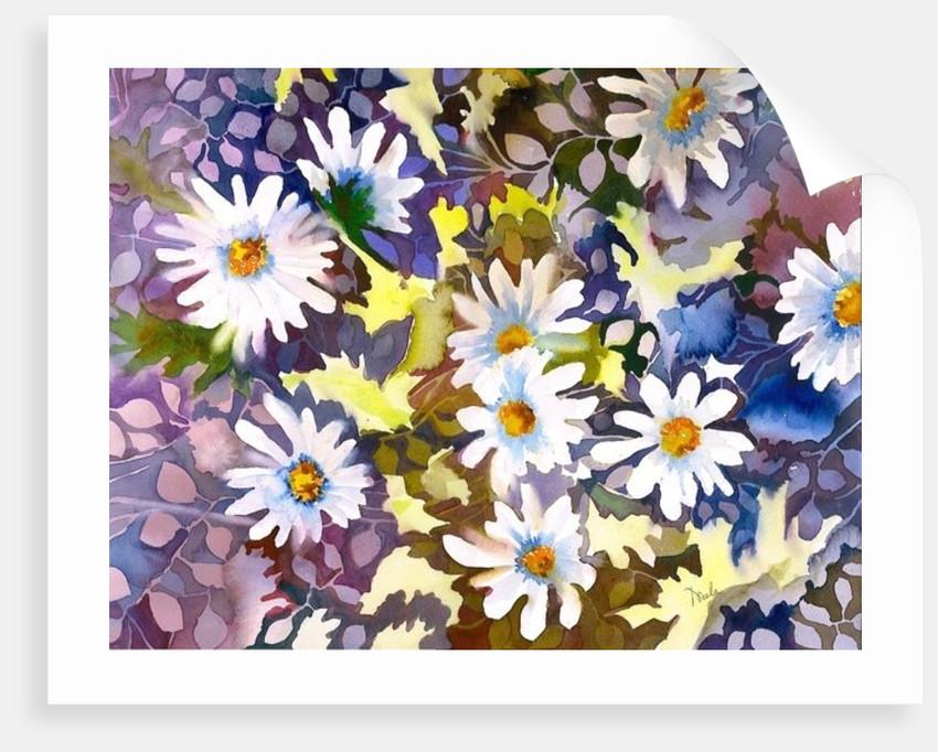 White Daisies by Neela Pushparaj