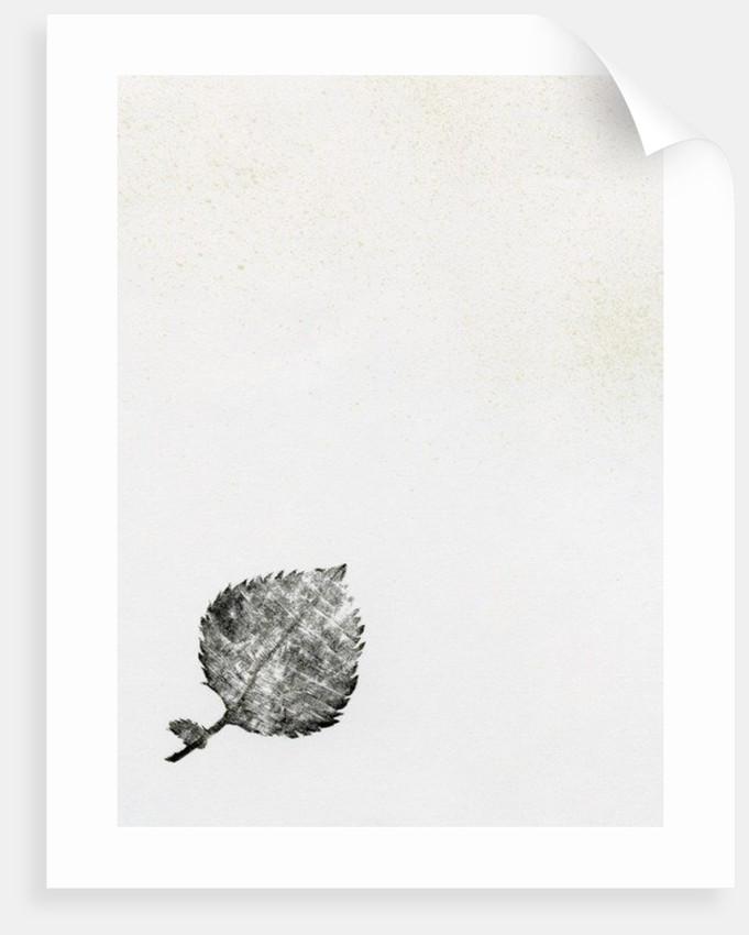 Leaf {Fay-erie Dust} by Bella Larsson