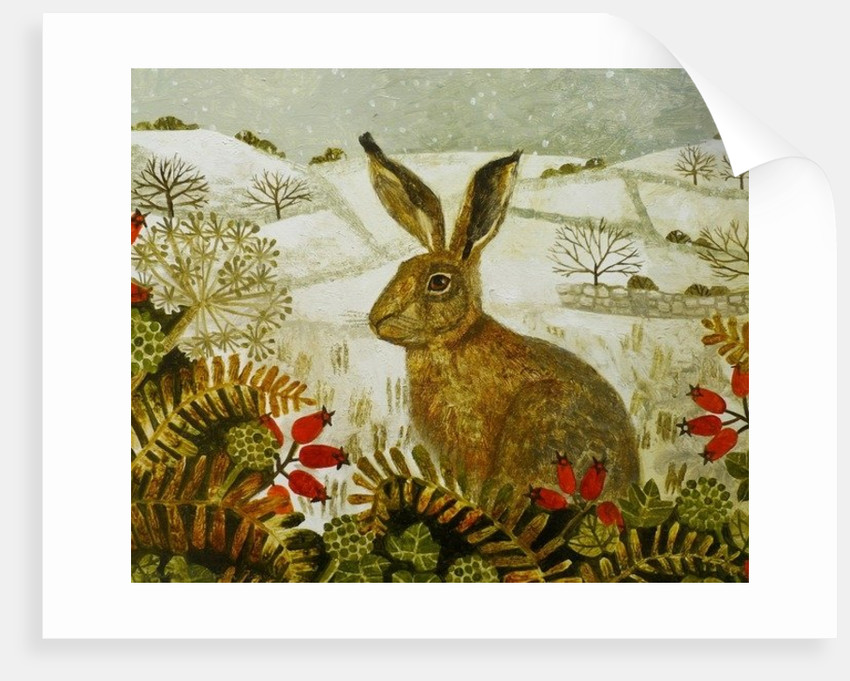 Hare in the Snow by Vanessa Bowman