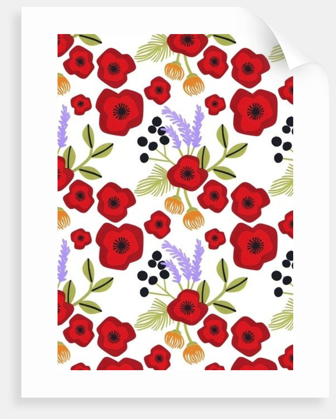 Poppy print by Isobel Barber