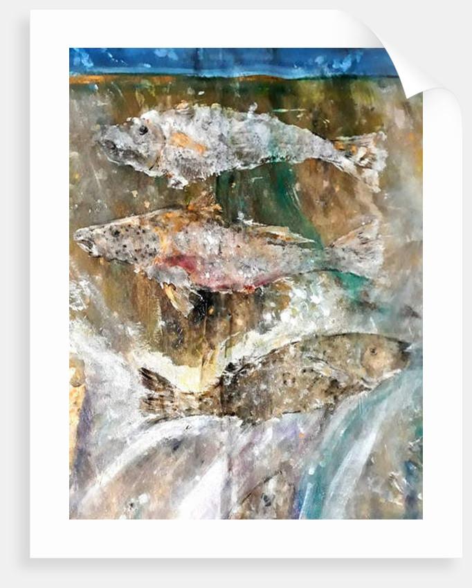 Fish Rising detail 3 by jocasta shakespeare