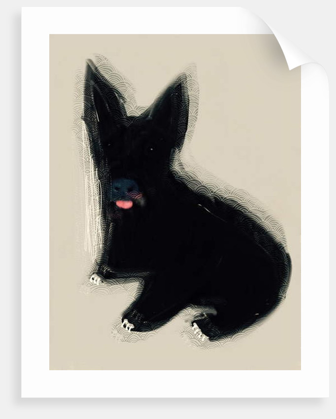 The Clever Dog Collection, 2019 by Sylver Bernat