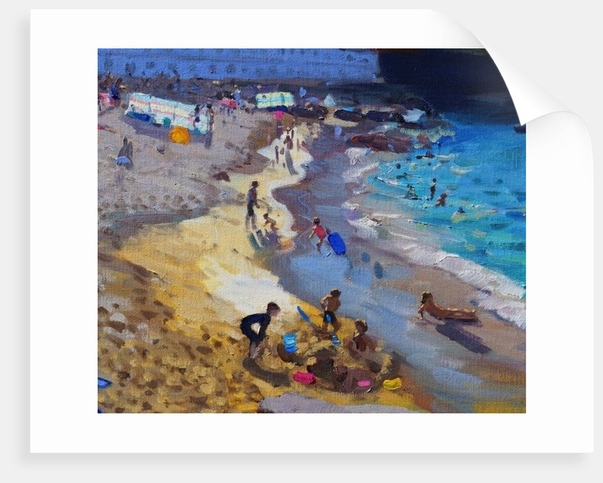 Detail of Overlooking Porthmeor beach, St Ives by Andrew Macara