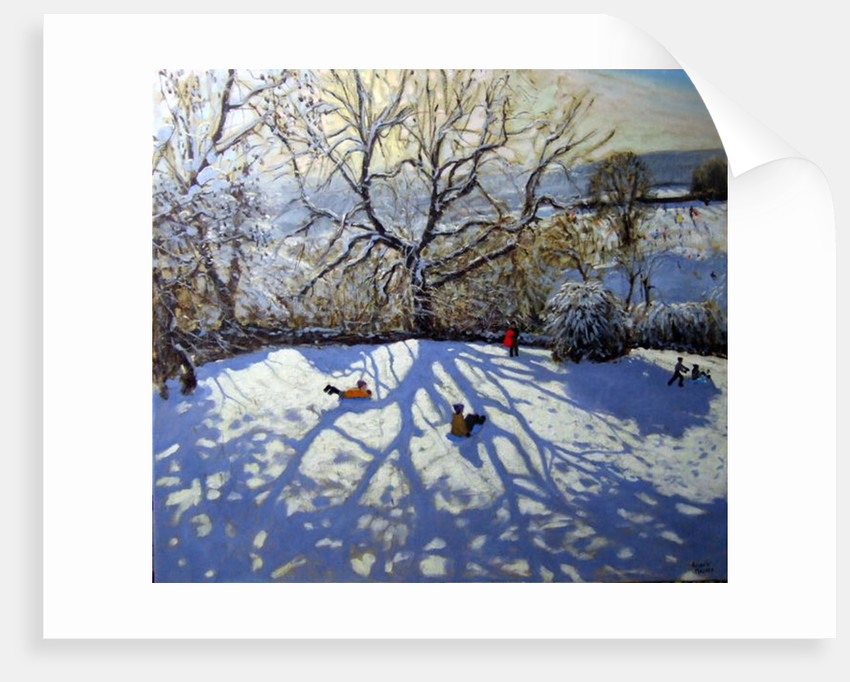 Large tree and tobogganers, Youlgreave, Derbyshire by Andrew Macara