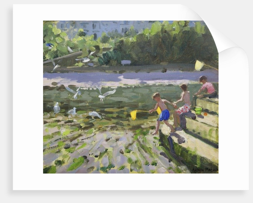 Kids and seagulls,Looe,2013, by Andrew Macara