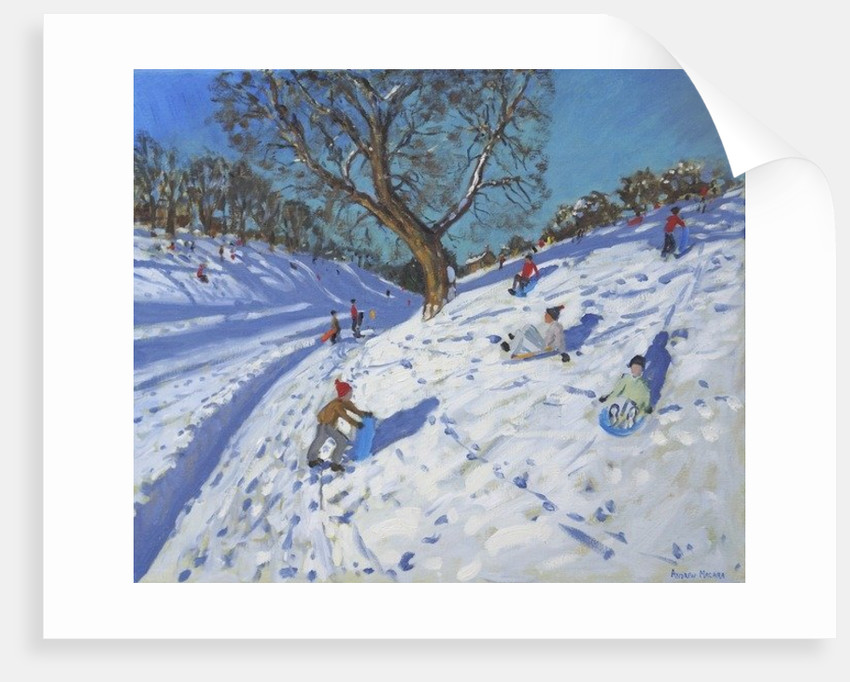 Bright morning,Chatsworth by Andrew Macara