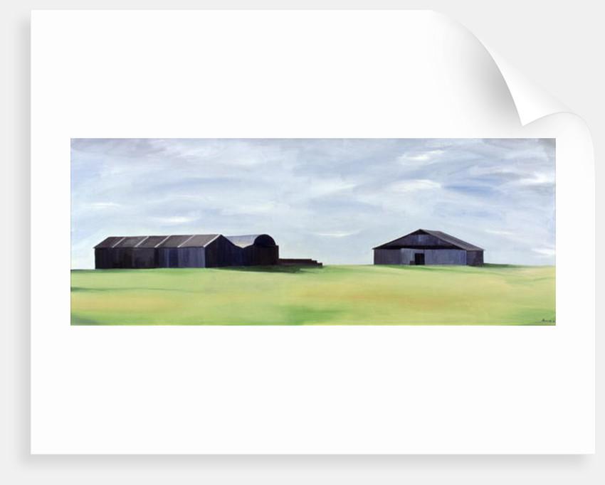 Summer Barns by Ana Bianchi