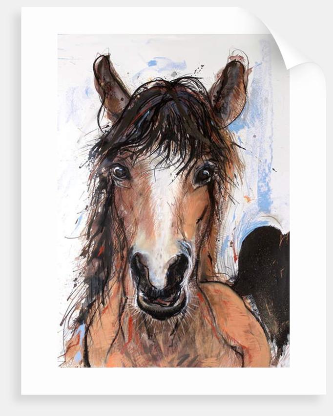 Crazy Horse, 2016 by Faisal Khouja