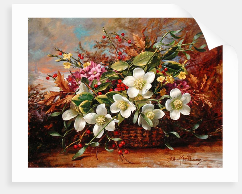 Winter Flora in a Woodland Shade by Albert Williams