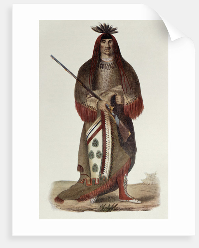 Wa-Na-Ta or 'The Charger', Grand Chief of the Sioux or Dakota Indians by Charles Bird King