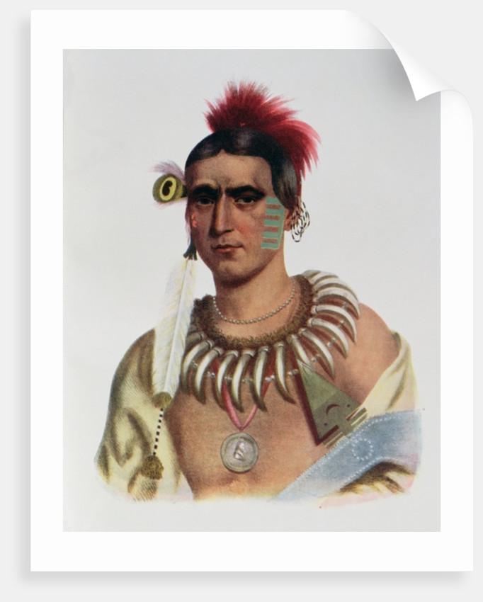 Ma-Has-Kah or 'White Cloud', an Iowa Chief by American School