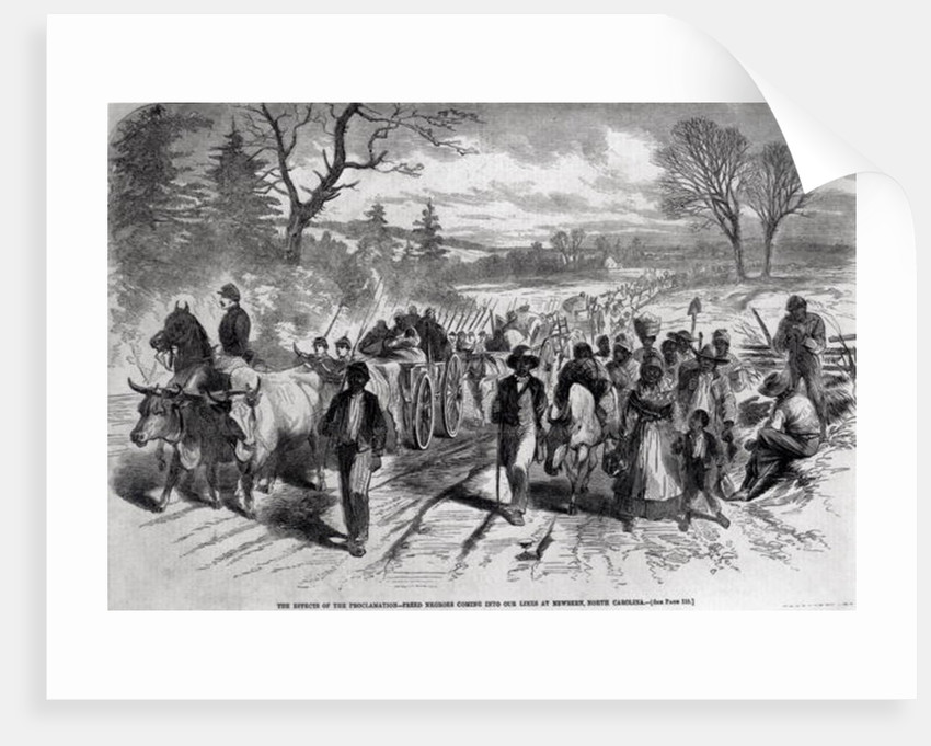 The Effects of the Proclamation: Freed Negroes Coming into Our Lines at Newbern, North Carolina by American School