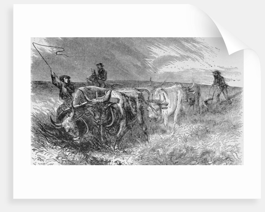 The Prairie Sod Plow by from 'The Pageant of America