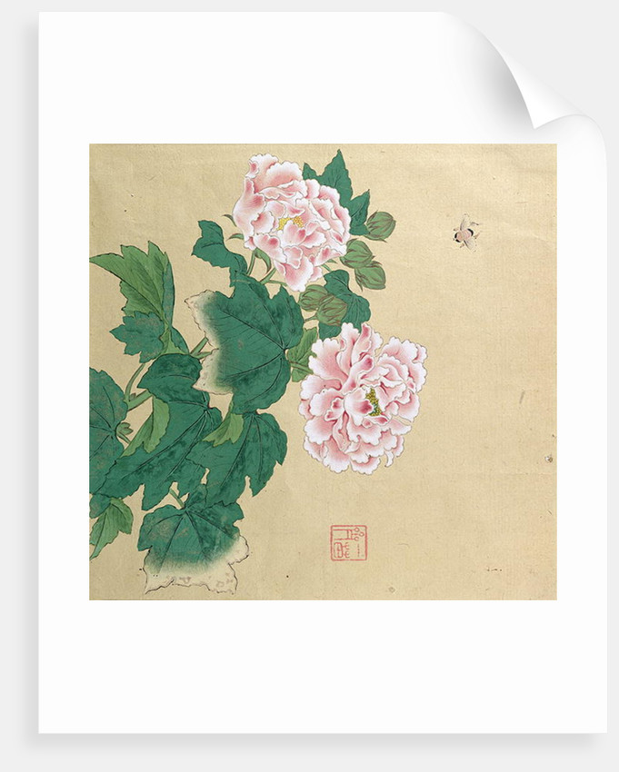 Bee and peony by Ichimiosai by Anonymous