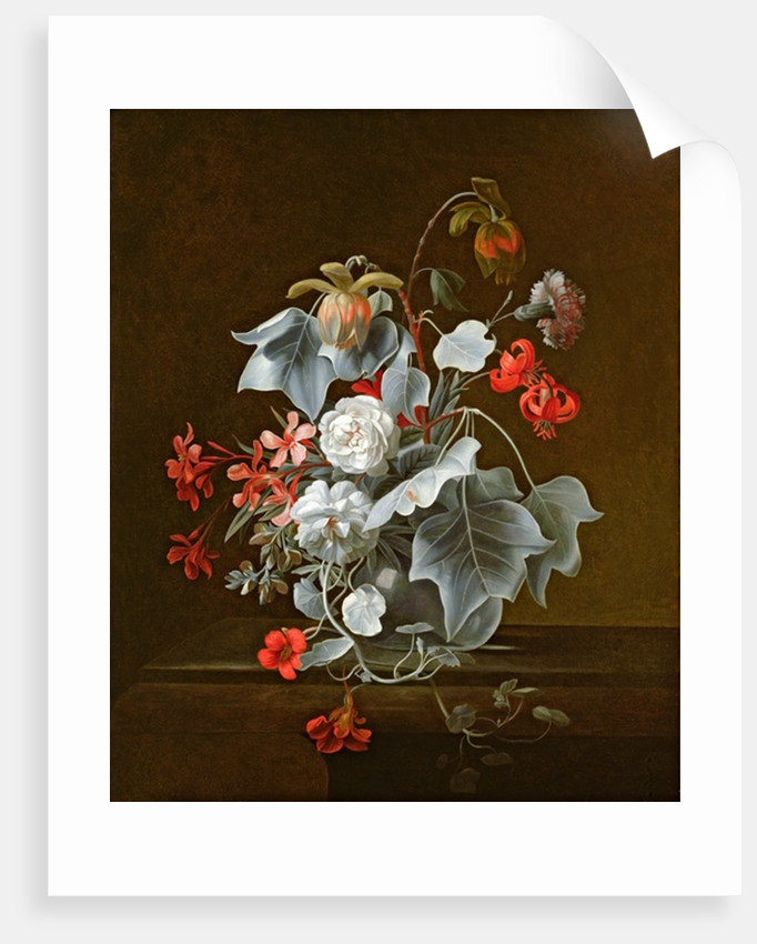 Still Life by Simon Peeterz Verelst