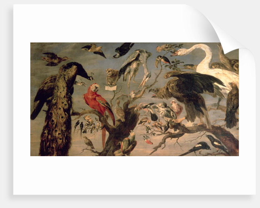 The Bird's Concert by Frans Snyders or Snijders