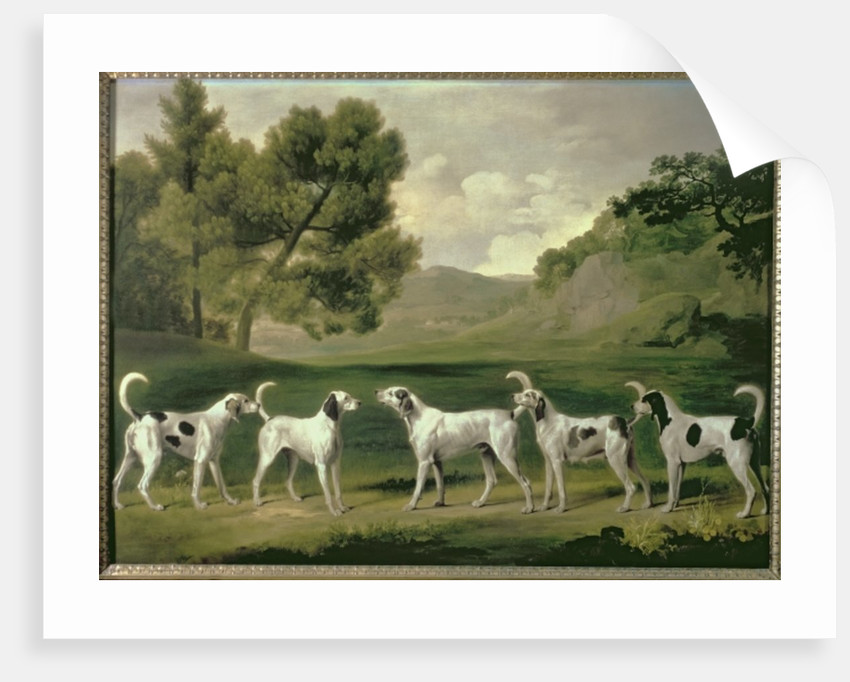 Foxhounds in a landscape, 1762 by George Stubbs