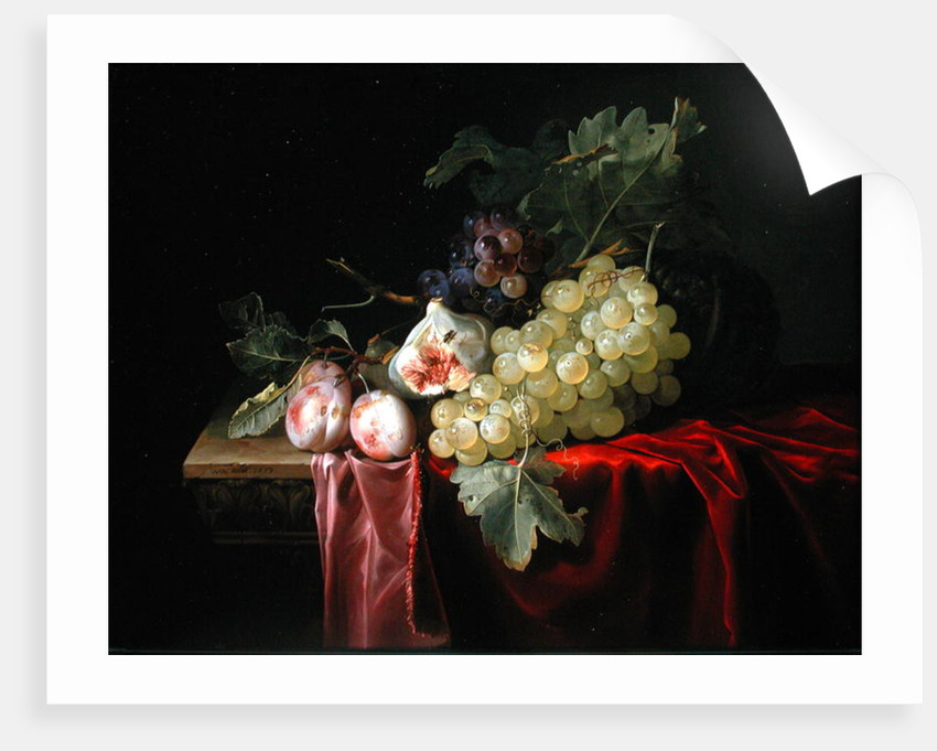 A still life with grapes, plums, figs and a melon on a partly draped stone ledge by Willem van Aelst