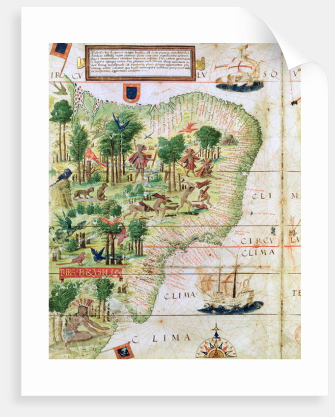 Brazil from the 'Miller Atlas' by Pedro Reinel by Portuguese School
